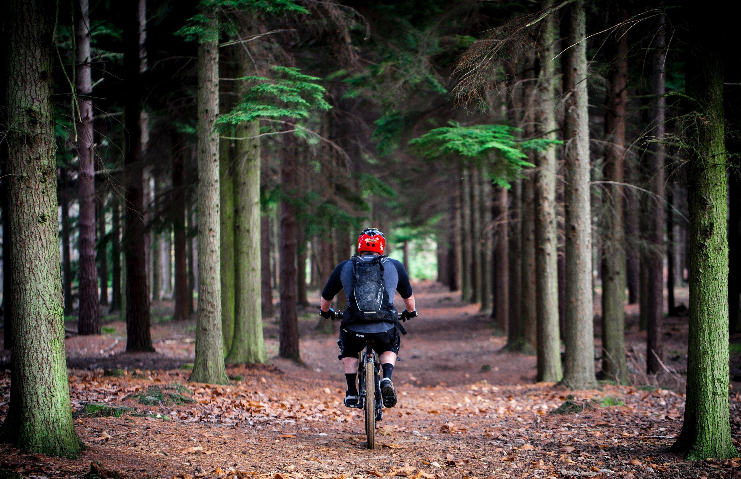 Mountain Biking on the Ozark Trail