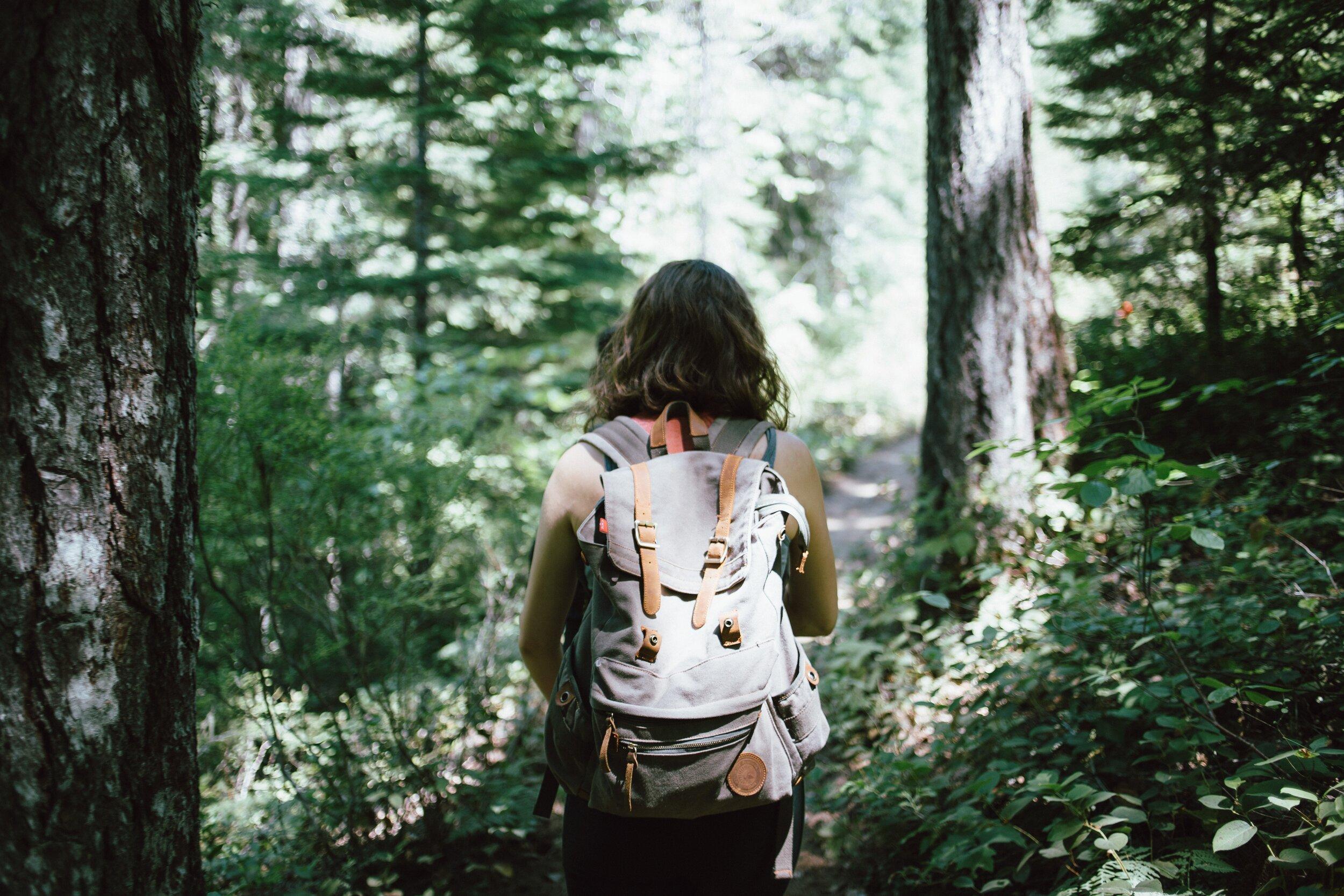 Hiking Greer Springs Trail
